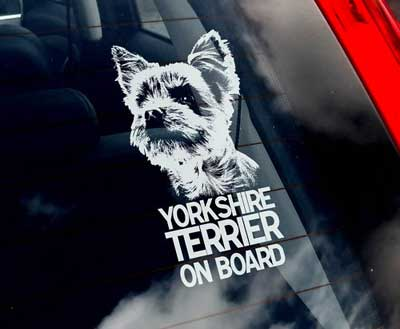 Yorkshireterrier bildekal - on board