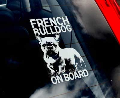 Fransk bulldogg bildekal - on board