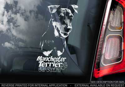 Manchesterterrier bildekal V2 - on board