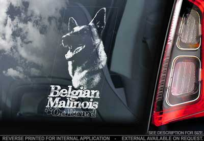Belgisk vallhund malinois bildekal V14 - on board