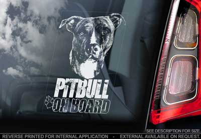 Amerikansk pitbullterrier bildekal V4 - on board