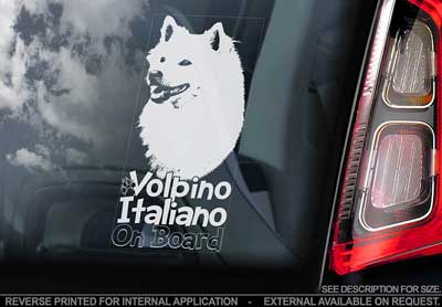Volpino italiano bildekal - on board