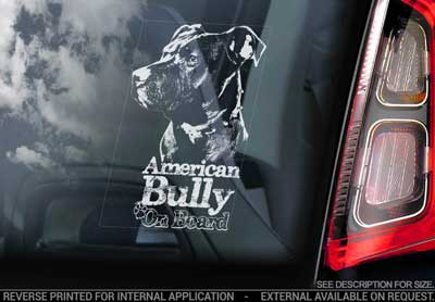 American bully bildekal V2 - On Board
