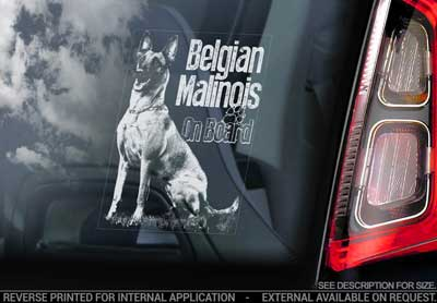 Belgisk vallhund malinois bildekal V15 - on board
