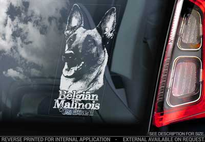 Belgisk vallhund malinois bildekal V16 - on board