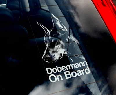 Dobermann bildekal - on board
