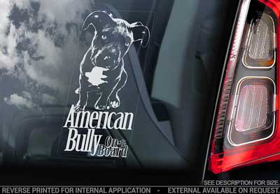 American bully bildekal V3 - On Board