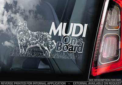 Mudi bildekal V4 - on board