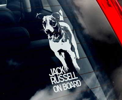 Jack russell terrier bildekal - on board