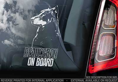 Beauceron bildekal V2 - on board