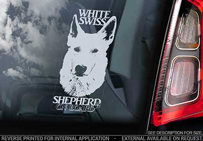 Vit herdehund bildekal (white swiss shepherd) - on board
