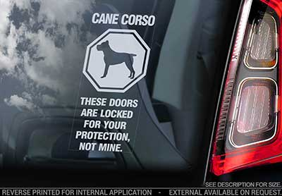 Cane corso bildekal V7 - on board