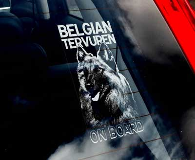 Belgisk vallhund tervueren bildekal - on board