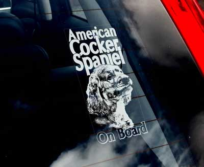 Amerikansk cocker spaniel bildekal - on board