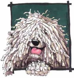 Komondor happy head t-shirt McCartney