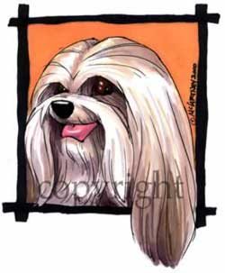 Lhasa apso happy head t-shirt McCartney