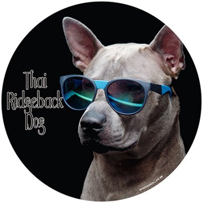 Thai ridgeback dog bildekal