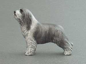 Bearded collie tjeckisk maximodell