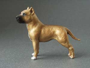 American staffordshire terrier tjeckisk maximodell