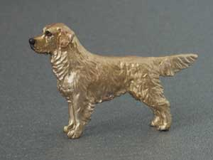 Golden retriever tjeckisk minimodell