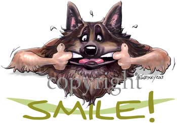 Belgisk vallhund tervueren smile t-shirt McCartney