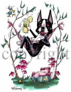 Bostonterrier cartoon t-shirt McCartney